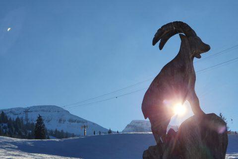 Schaller Uto – Skiweekend 2020
